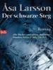 cover_schwarzer_steg